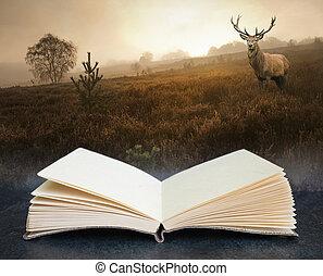 libro, alba, composito, aperto, wth, concetto, nebbioso, autunno, immagine, foresta, cervo, cervo, rosso, paesaggio, digitale, nebbioso