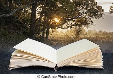 libro, circondare, aperto, composito, sopra, lago, inghilterra, bello, distretto, alba, autunno, immagine, nebbioso, crummock, concettuale, campagna, acqua, nebbioso