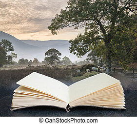 libro, circondare, wth, bello, alba, campagna, acqua, composito, aperto, distretto, autunno, immagine, nebbioso, nebbioso, digitale, sopra, lago, inghilterra, concetto, crummock