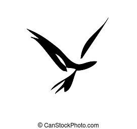 liscio, uccello