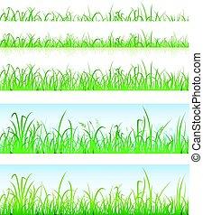 livelli, erba, verde, seamless