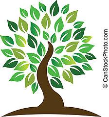 logotipo, albero