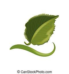 logotipo, ecologico, foglia