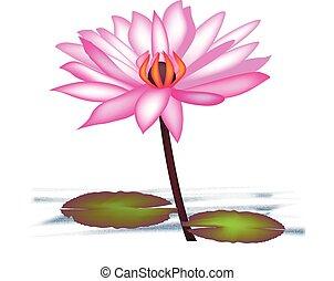loto, logotipo, fiore