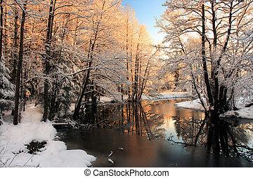 luce, fiume, inverno, alba