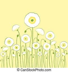 luce, sfondo bianco, giallo, papavero