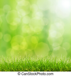 luci, bokeh, erba, verde