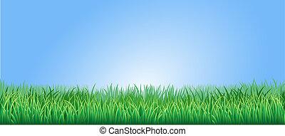 lussureggiante, erba, verde, illustrazione
