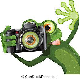 macchina fotografica, rana