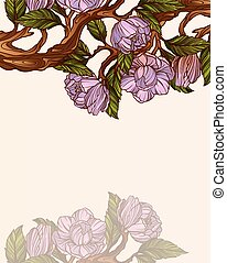 magnolia, ramo