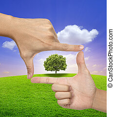 mani, albero, cornice, umano, grande