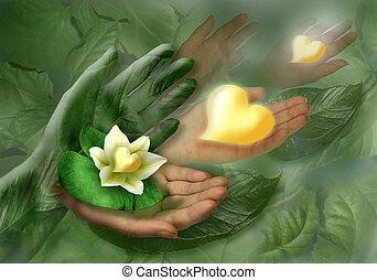 mani, cuore, fiore, foglia, natura morta
