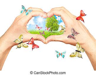 mani, dettagli, umano, natura