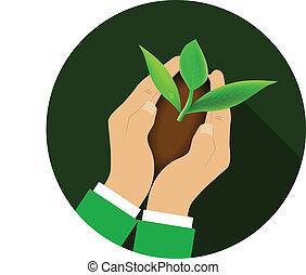 mani, plant., presa a terra, giovane