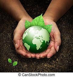 mani, presa a terra, terra, verde, umano