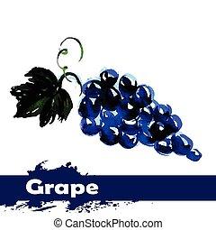mano, acquarello, fondo., frutta, uva, disegnato, bianco, pittura