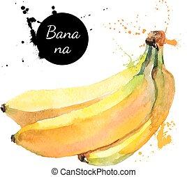 mano, acquarello, frutta, fondo, disegnato, bianco, pittura, banana