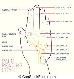 mappa, chiromanzia, lettura, linee, chart., palma, principale, palm's