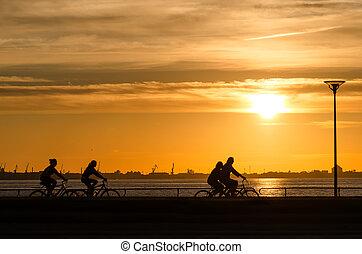 mare, ciclista, sopra, tramonto, silhouette