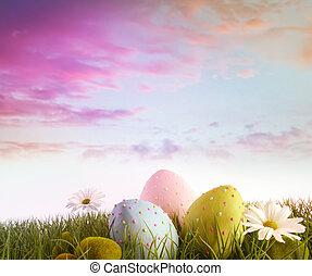 margherite, uova, arcobaleno, cielo, colorare, erba