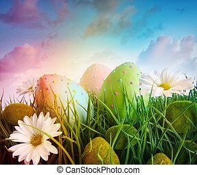 margherite, uova, arcobaleno, cielo, colorare, erba, grande