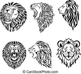 mascotte, logotipo, grande, faccia, set, leone
