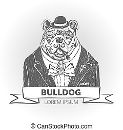 mascotte, testa, feroce, bulldog, illustrazione, vettore, fondo, bianco