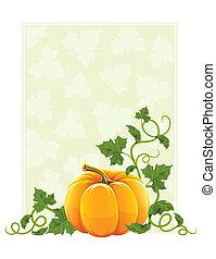 maturo, foglie, arancia, verdura verde, zucca