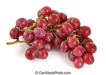maturo, succoso, grande, uva, bacche, rosso