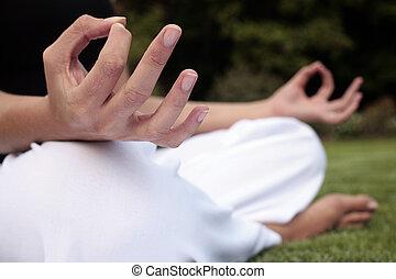 meditazione, prato
