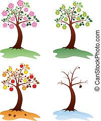 mela, albero