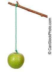 mela, bastone