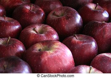 mela, fondo
