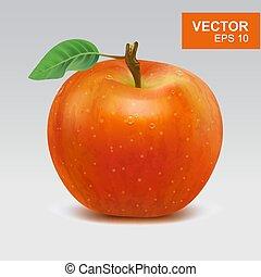 mela, illustrazione, realistico, vettore, mele, icon., intero, rosso, 3d