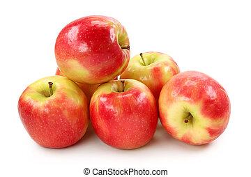 mela signora rosa