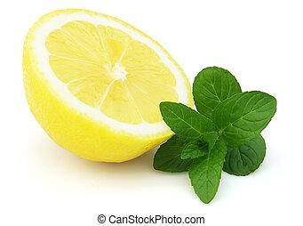 menta limone