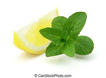 menta limone, succoso, fresco