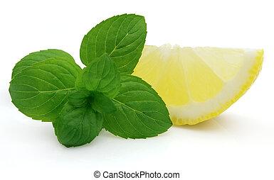 menta, limone, succoso