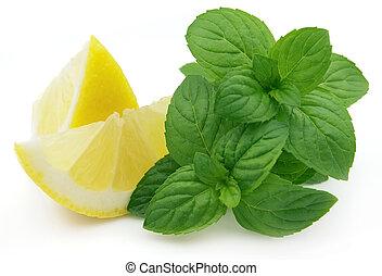 menta limone, succoso