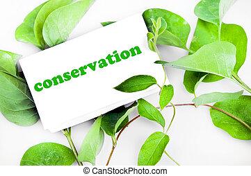 messaggio, conservazione, foglie
