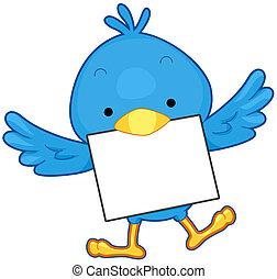 messaggio, uccello