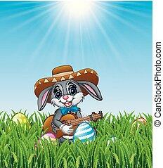 messicano, cartone animato, chitarra, coniglio, erba, canto, gioco