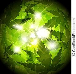 mette foglie, primavera, astratto, sfondo verde, fresco