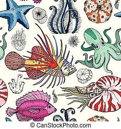 modello, deepwater, seamless, organismi