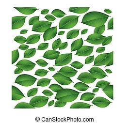 modello, foglie, isolato, struttura, seamless, realistico, sfondo verde, bianco
