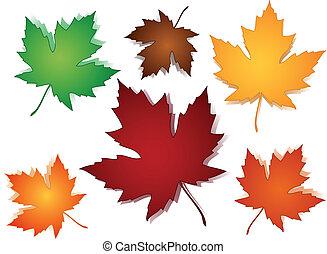 modello, foglie, seamless, acero, cadere