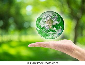 mondo, questo, albero, verde, giorno, maschio, :, ammobiliato, pianeta, natura, bokeh, immagine, nasa, ambiente, sfocato, tenendo mano, concept:, fondo, elementi