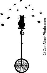 monocycle, uccelli, gatto