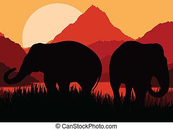 montagna, famiglia, natura, africa, vettore, elefante, selvatico