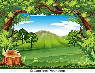 montagna, verde, scena, albero
